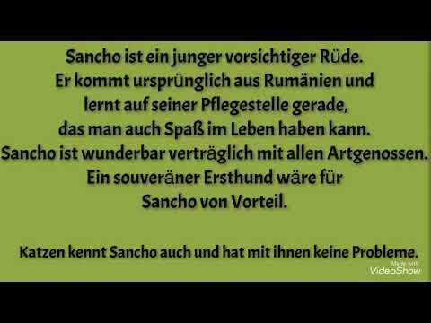 ��Sancho��